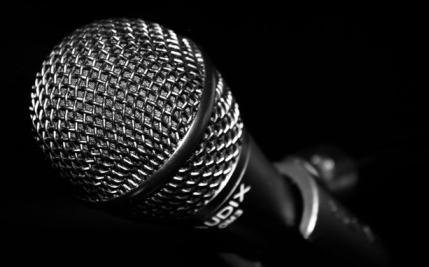 mic1flip